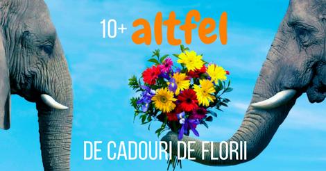 10+ altfel de cadouri de Florii